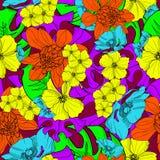 De Hawaiiaanse tropische bloemen overhandigen getrokken naadloze patroonvector Stock Fotografie