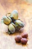 De hazelnootnoten van de hazelnotencluster in harde shell Stock Foto