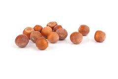 De hazelnoten van noten Royalty-vrije Stock Afbeelding