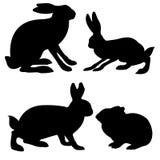De hazen en het konijn van silhouetten Stock Afbeeldingen