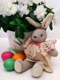 De hazen van Pasen met eieren Stock Foto's