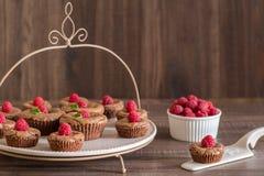 De heerlijke cakes van de chocoladelava met verse frambozen en munt, op de porcelan plaat Stock Fotografie