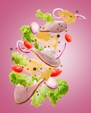 De heerlijke daling van sandwichingrediënten van de lucht op een geïsoleerde roze achtergrond Stock Foto