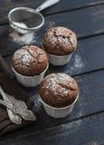 De heerlijke muffins van de veganistchocolade met suikerglazuursuiker Royalty-vrije Stock Fotografie