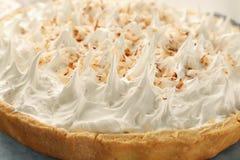 De heerlijke pastei van de kokosnotenroom met slagroom royalty-vrije stock afbeelding
