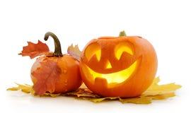 De Hefboom O'Lantern van de pompoen van Halloween Stock Foto