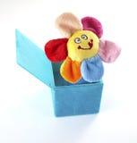 De hefboom van de bloem in de doos Stock Foto's