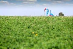 De hefboom van de oliepomp op gebied Stock Foto