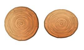 De heftstompen maken hout schoon Royalty-vrije Stock Afbeeldingen