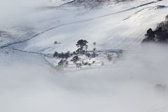 De heide van de winter Royalty-vrije Stock Afbeeldingen