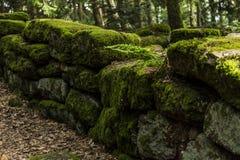 De heidense muur, Mont Sainte Odile, Ottrott, Alsage, Frankrijk Stock Foto