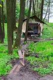 De heilige lente in bos dichtbij dorp Sherstin, Wit-Rusland Stock Fotografie