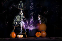 De Heks en de Kat van Halloween royalty-vrije stock foto's
