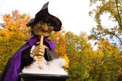 De Heksen van Halloween brouwen - 2 Stock Foto