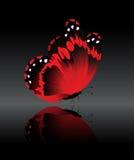 De helder-rode vlinder Stock Foto