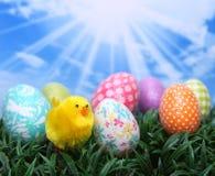 De heldere Eieren van de Lente van Pasen in het Gras Stock Foto's