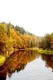 De heldere kleuren van Autumn Landscape The van de herfst door de rivier Stock Foto