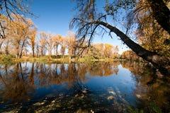 De heldere kleuren van de herfst Stock Foto