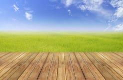 De heldere lente met van het achtergrond aardpadieveld perspectief houten plank royalty-vrije stock afbeeldingen