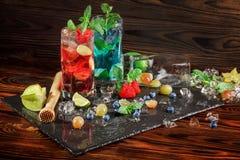 De heldere rode en blauwe cocktails van een de zomeralcohol met bessen, munt, carambola en vermouth op bruine houten achtergrond  Royalty-vrije Stock Fotografie