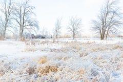 De heldere Sneeuwwintertijd van het Landbouwersgebied Stock Fotografie