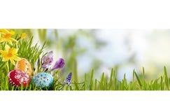 De heldere verse banner van de lentepasen met eieren royalty-vrije stock afbeelding