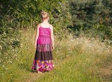 De heldere zomer Royalty-vrije Stock Afbeeldingen
