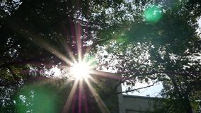 De heldere zon glanst door boomgebladerte op de straten van de stad Langzame Motie stock videobeelden