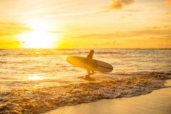 De hele dag door het surfen stock fotografie