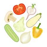De helft groenten Reeks vectorillustraties Stock Foto