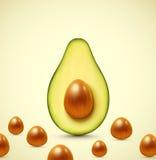De helft van avocado royalty-vrije illustratie