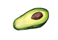 De helft van avocado vector illustratie