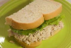 De helft van een sandwich van de tonijnsalade Stock Foto's