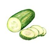 De helft van komkommer Royalty-vrije Stock Afbeeldingen