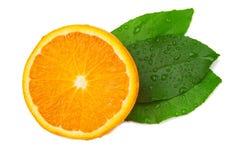De helft van sinaasappel en blad drie Royalty-vrije Stock Fotografie