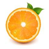 De helft van Sinaasappel met de Daling van het Blad en van het Water Stock Foto's