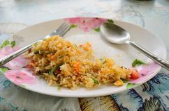 De helft van Thaise krab gebraden rijst Royalty-vrije Stock Foto