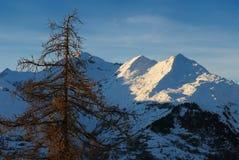 De helling van de berg `s royalty-vrije stock afbeeldingen