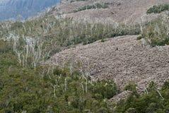 De helling van de puinkegel op berg Stock Afbeeldingen