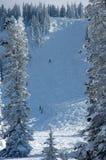 De Helling van de ski Royalty-vrije Stock Foto's