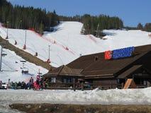De helling van de ski Stock Afbeeldingen