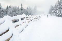De helling van de ski Royalty-vrije Stock Afbeeldingen