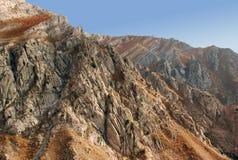 De helling van westelijk Tien Shan in Augustus Royalty-vrije Stock Fotografie