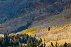 De hellingen van de berg in Daling Royalty-vrije Stock Afbeelding