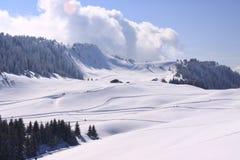 De hellingen van de ski Royalty-vrije Stock Foto's