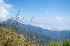 De hemel berg van de achtergrondbehangaard stock foto