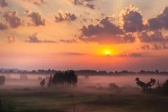 De hemel bij zonsopgang, dichte mist op de weide in vroege ochtend Stock Afbeeldingen