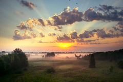 De hemel bij zonsopgang, dichte mist op de weide in vroege ochtend Royalty-vrije Stock Foto's
