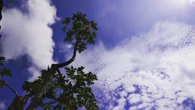 De hemel is een gedicht royalty-vrije stock fotografie