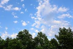 De hemel met witte wolken en verlichting van de Zon royalty-vrije stock foto's